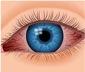 eye diseases conjunctivitis pics